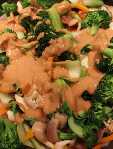 Vegetable Stir-Fry with Peanut Butter Sauce (Dairy-free, Gluten-free)