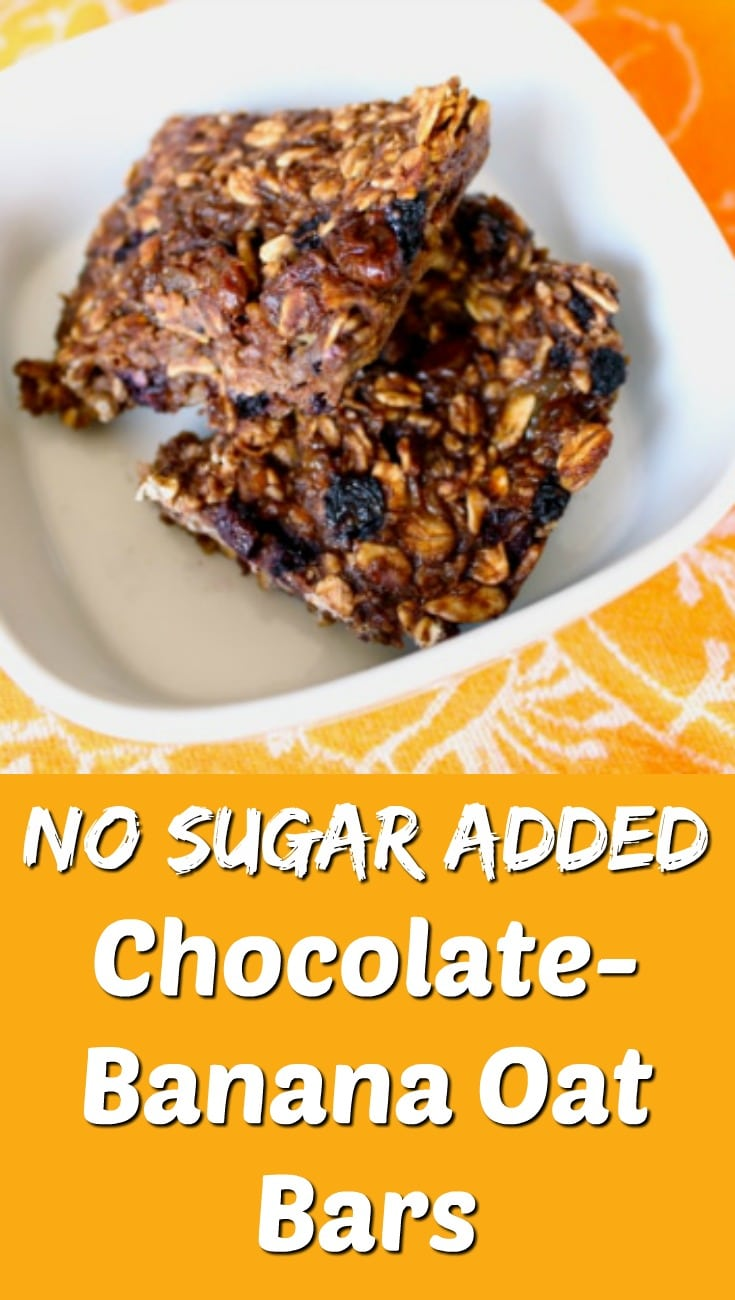 Vegan Chocolate Banana Oat Bars
