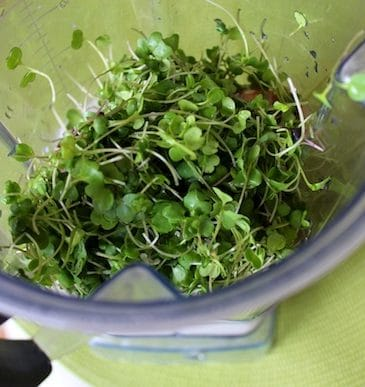 Sprouts for Health & Using Non-Nutritive Sweeteners
