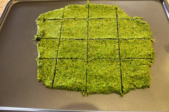 green juice cracker batter on dehydrator sheet with scored crackers