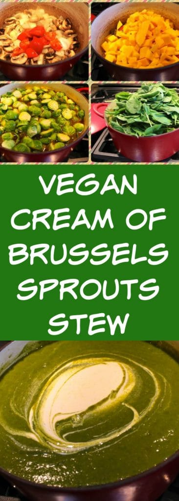 Vegan Cream of Brussels Sprouts Stew recipe with a cashew cream sauce. This is a hearty recipe full of healthy vegetables and flavor.