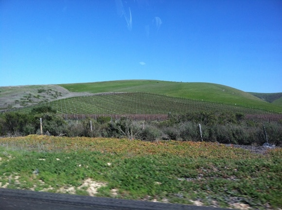 Vineyards and rolling hills of the central coast.