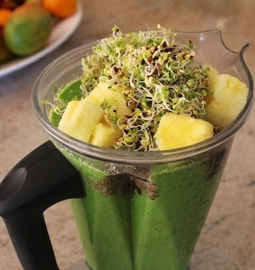 Broccoli Sprout Smoothie (Dairy-Free & Vegan)