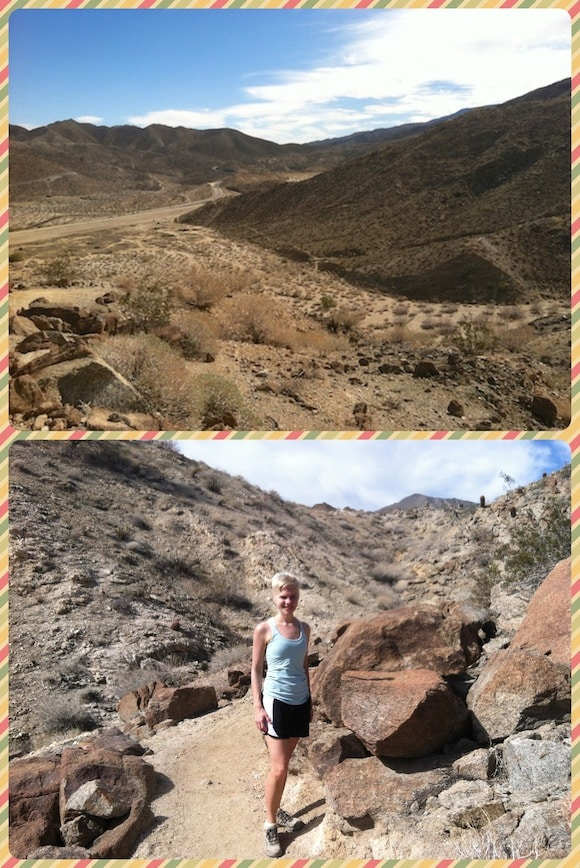 Photos from hike in Palm Desert in February.