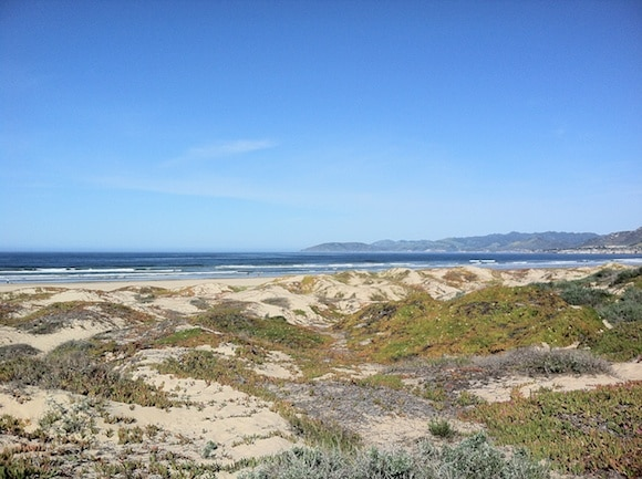 Beautiful day in March on California's central coast.