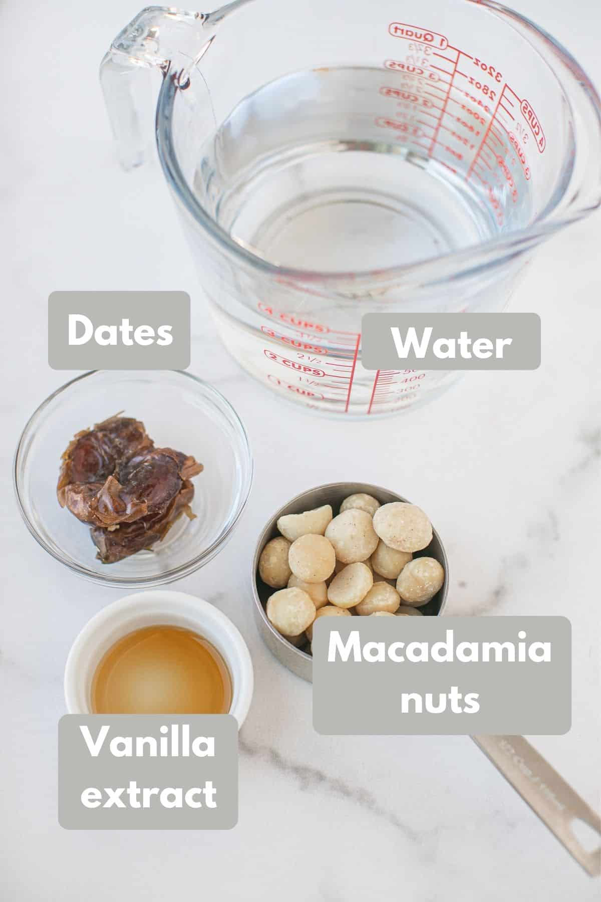 ingredients for macadamia milk recipe