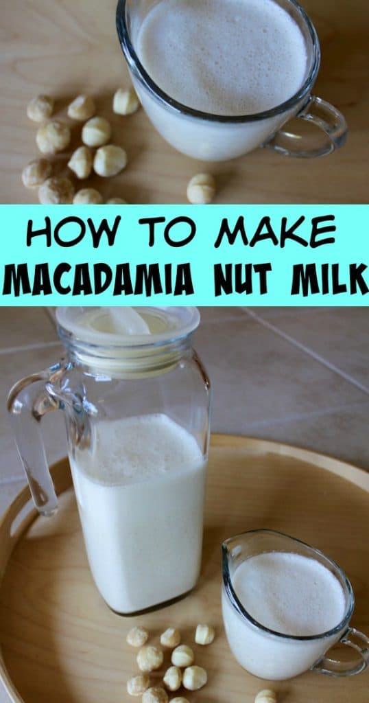 How to make homemade macadamia nut milk for a delicious dairy-free nut milk. No straining required, just blend and serve! #dairyfree #vegan #paleo