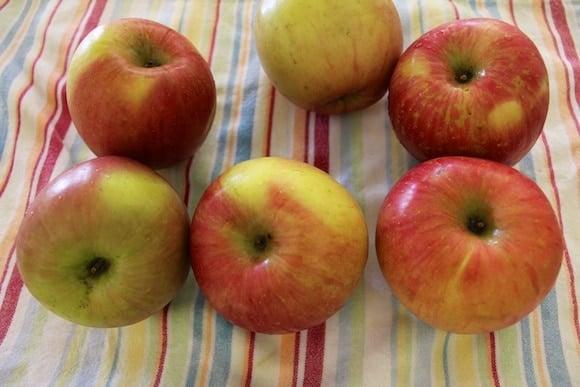 Organic Fuji apples.