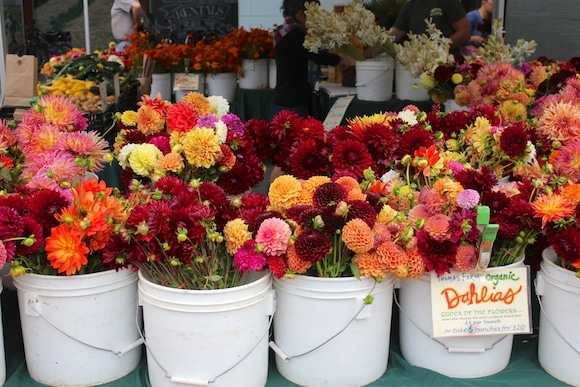Flowers at the farmers' market