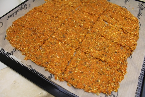 Carrot Juice Pulp Crackers scored