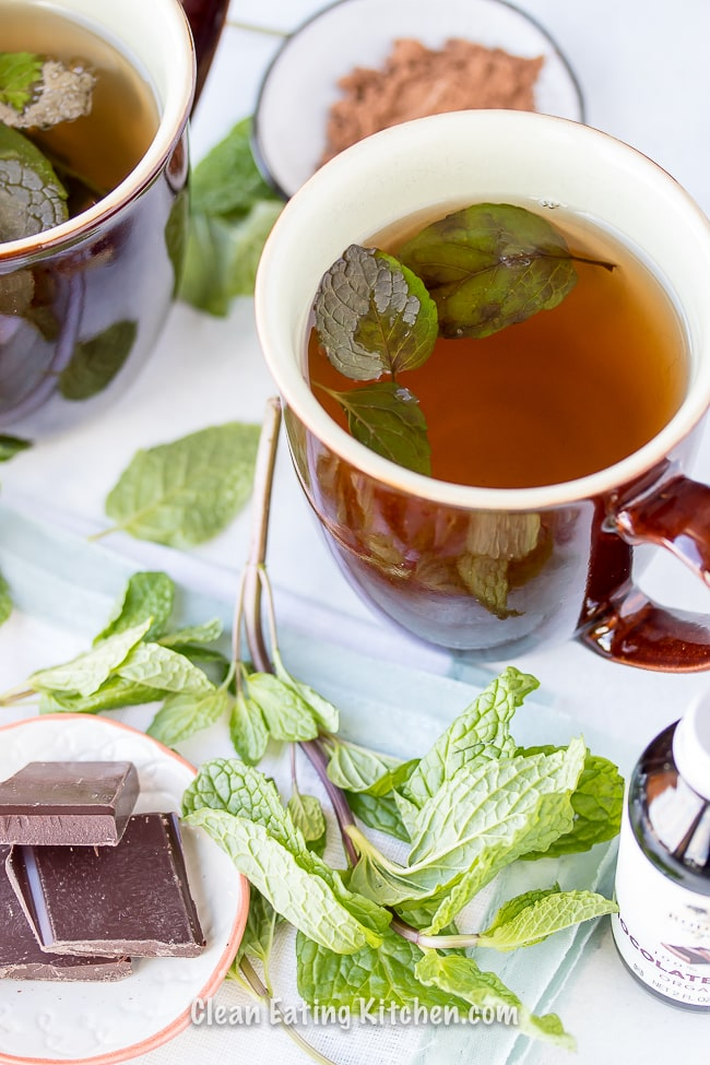 homemade chocolate mint tea in a brown mug with mint leaves and chocolate