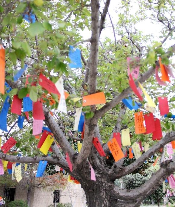 City of Hope Wish Tree