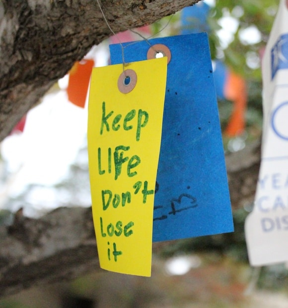 City of Hope Wish Tree tag written
