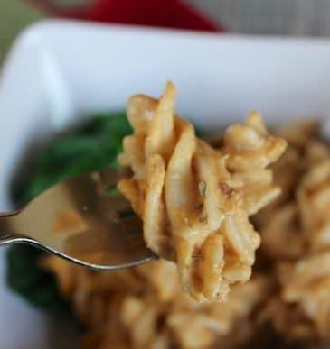 Vegan Macaroni Squash & The China Study Cookbook