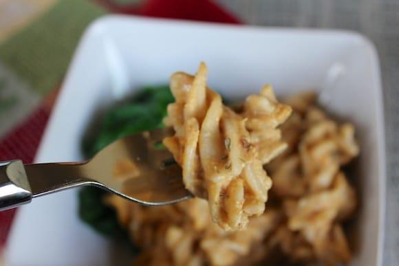 A bite of Macaroni Squash
