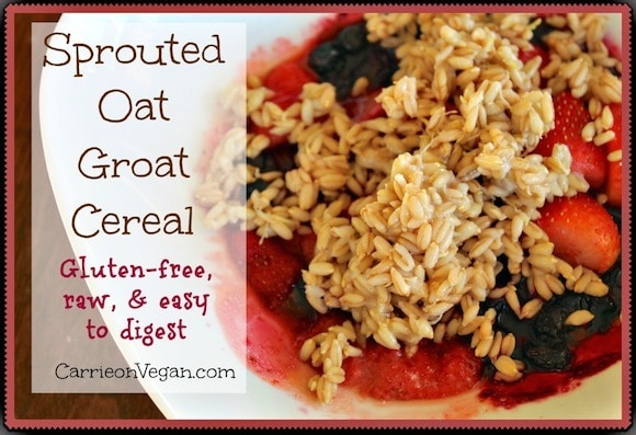 Sprouted Oat Groat Cereal from Carrie on Vegan | www.carrieonvegan.com