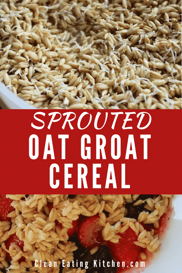 Sprouted Oat Groat Cereal