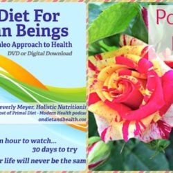 Collage with Diet for Human Beings cover