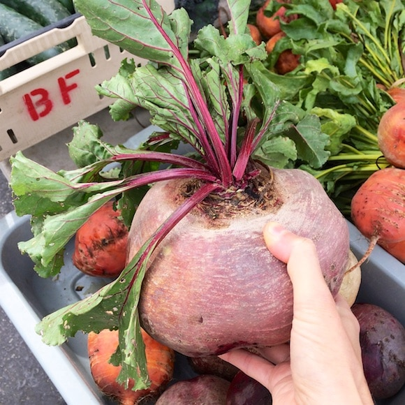 Giant beet as seen on Carrie on Living | www.cleaneatingkitchen.com