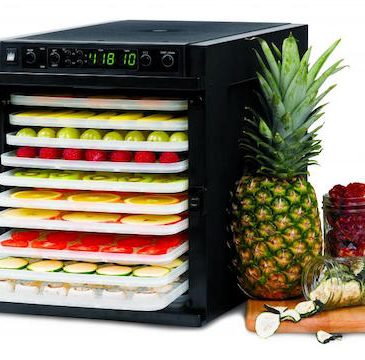 Sedona Express Dehydrator from Tribest featured on Carrie on Living | www.cleaneatingkitchen.com