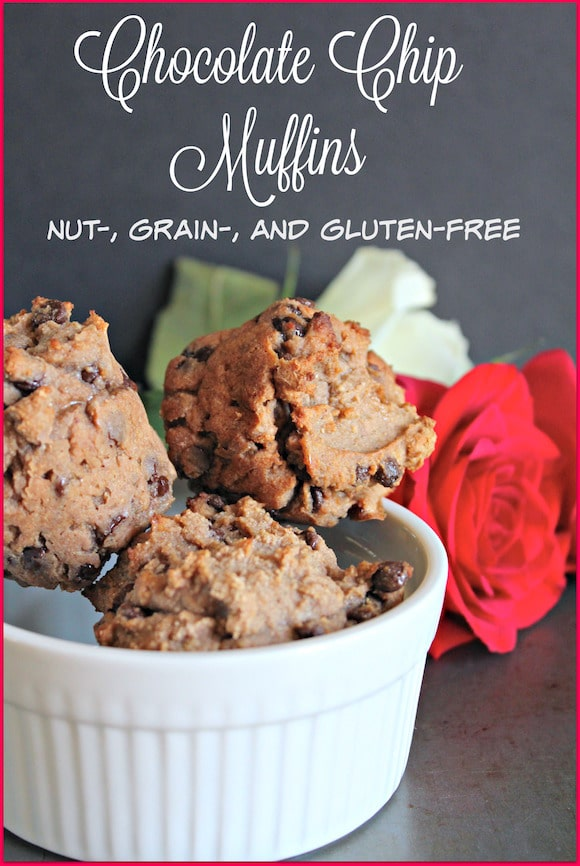 Allergy free chocolate chip muffins