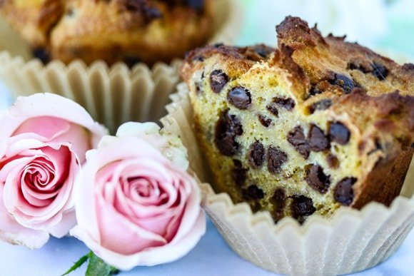 Cassava chocolate chip muffins grain-free