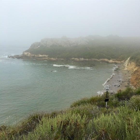 Foggy Shell Beach