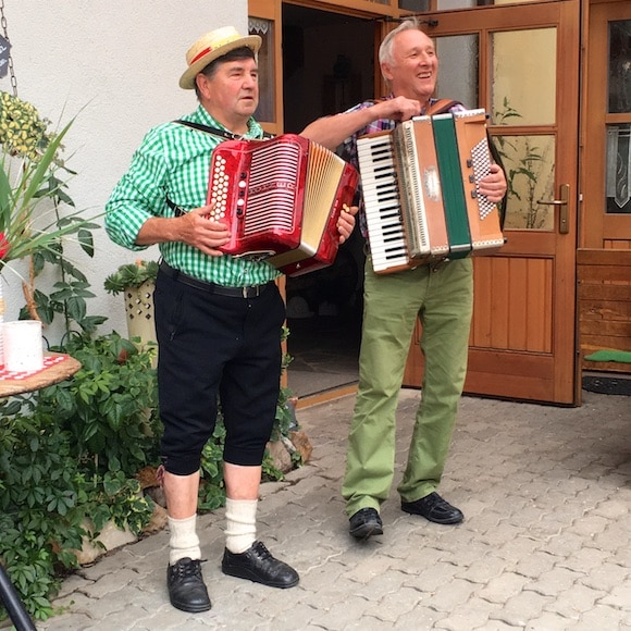 accordion-player