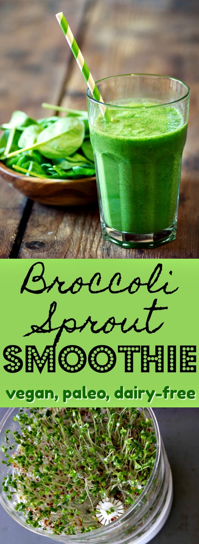 Broccoli sprouts in a smoothie is a quick and easy way to get this superfood into your diet. Frozen fruit helps mask the strong flavor as well, so it's a double-win. | Vegan smoothie, paleo green smoothie, broccoli sprout smoothie, dairy-free smoothie
