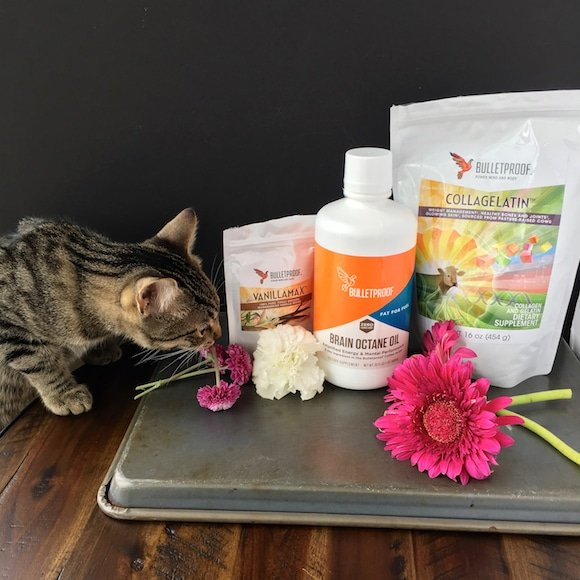 Bulletproof shake ingredients with kitten