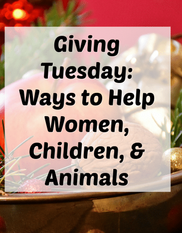 Giving Tuesday & November Favorites