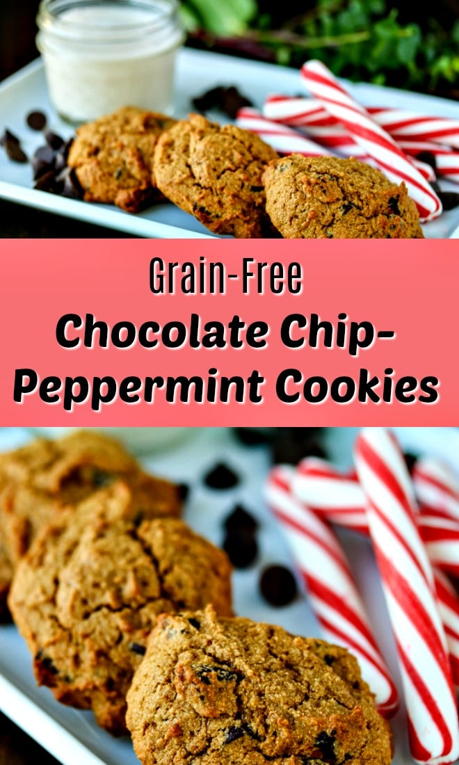 I have the perfect Chocolate Chip Mint Cookie recipe! This grain- and gluten-free recipe uses cassava flour, and it's the perfect treat for the holidays.