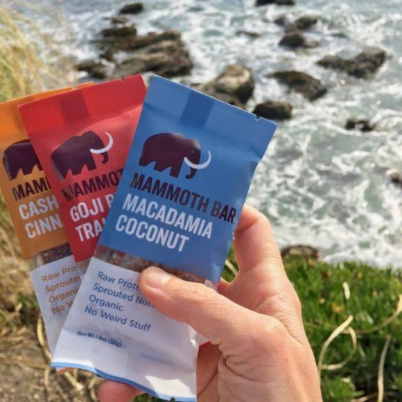 Mammoth Bars