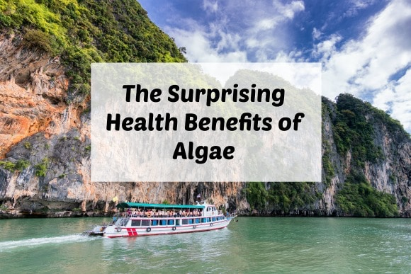 The health benefits of algae