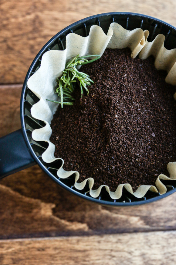 rosemary with coffee grounds