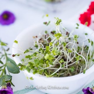 broccoli sprouts in a white dish