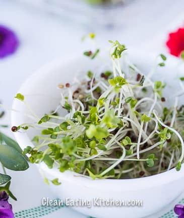 Broccoli Sprouts Benefits + 6 Ways to Eat Them