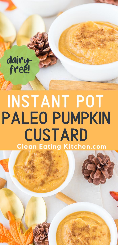 instant pot paleo pumpkin custard