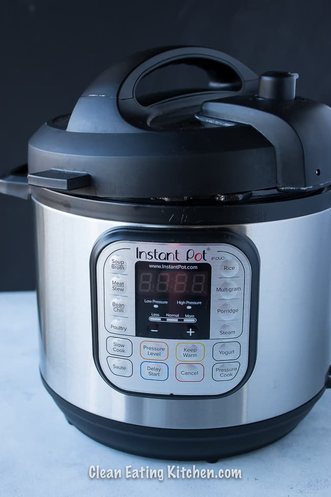 instant pot 6-quart duo model