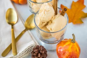 vegan pumpkin ice cream with cinnamon sticks