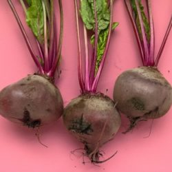 Beets with their roots