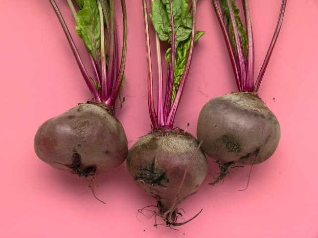Beets on pink background