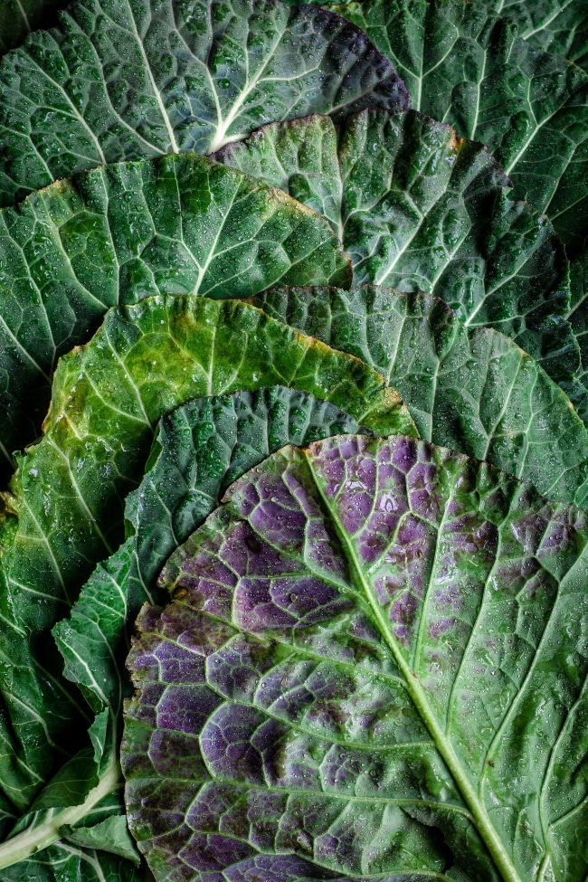 Dark leafy greens on table