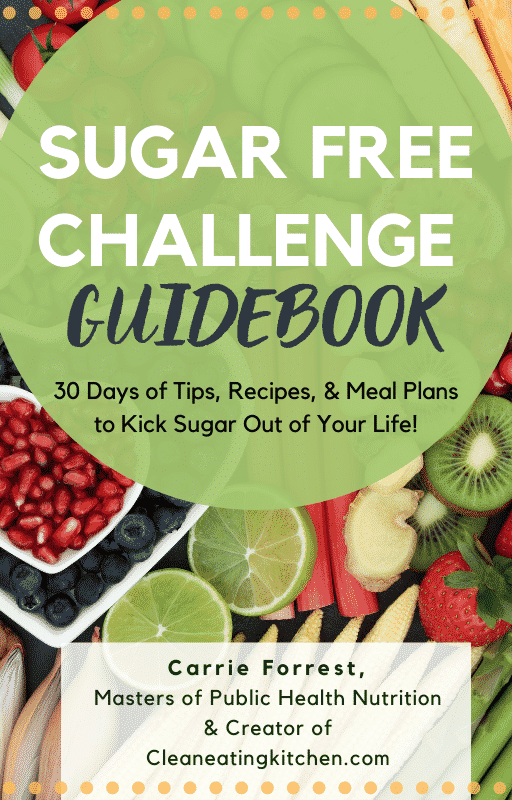 sugar free challenge guidebook cover