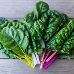 selection of rainbow chard on a countertop