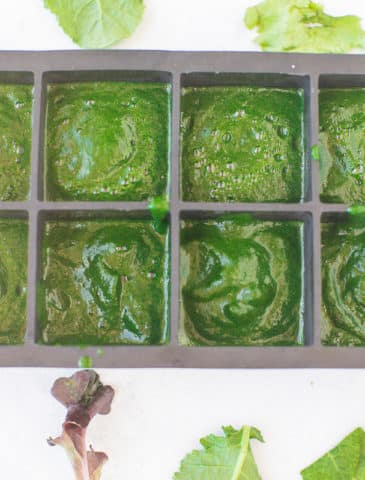 ice cube tray with pureed spinach