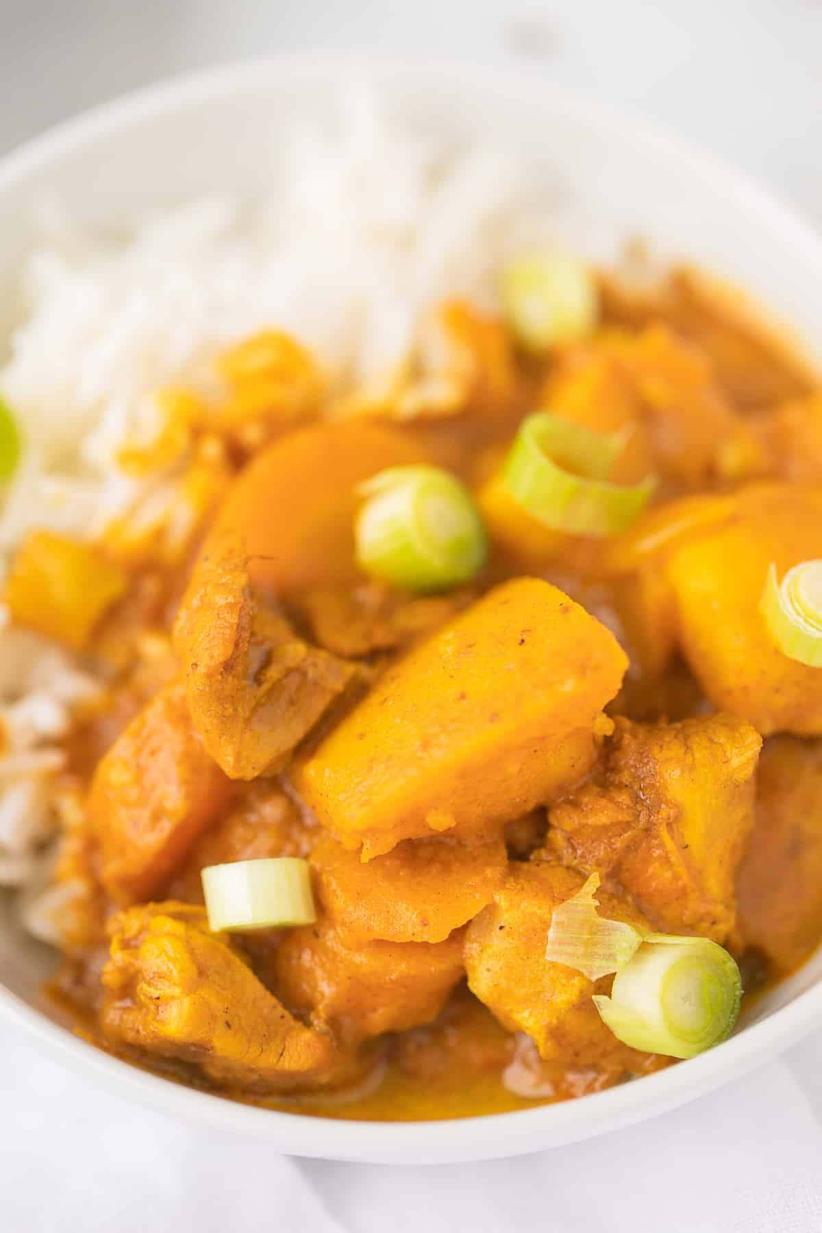 picture of the curry with vegetables and green onions