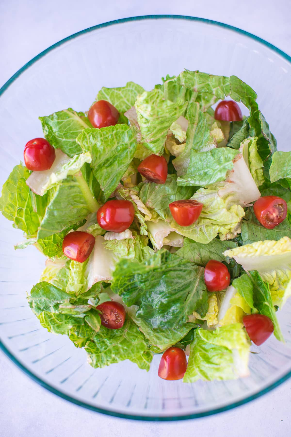 romaine salad with chopped baby tomatoes