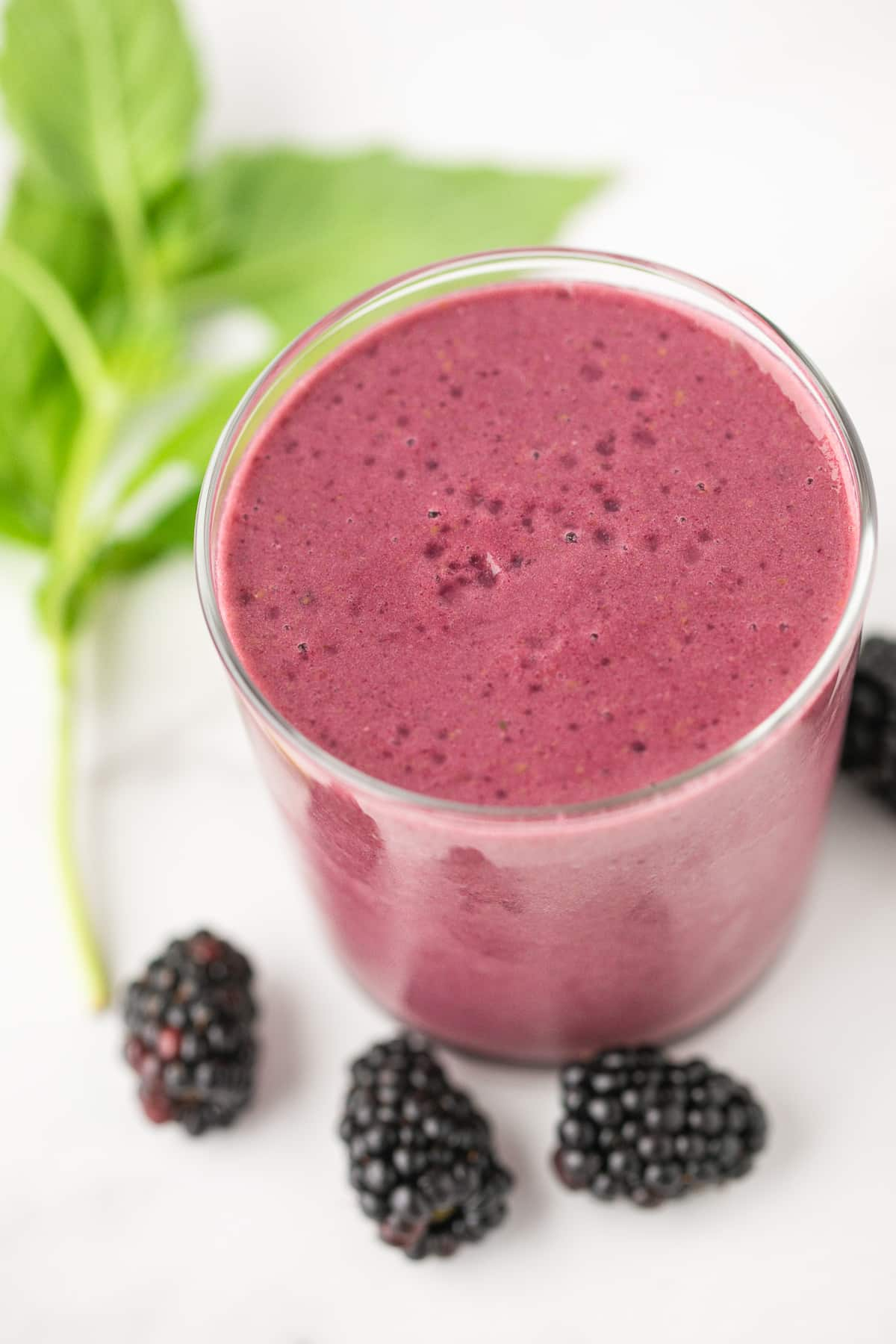 blackberry smoothie in a glass with fresh basil