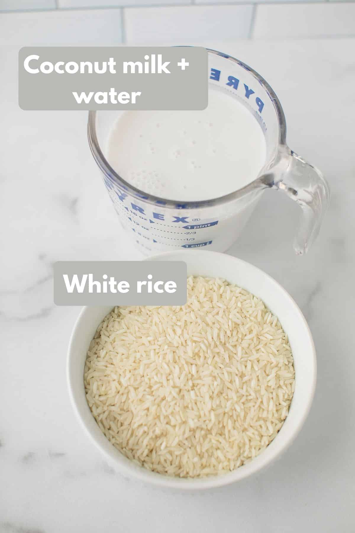 labeled ingredients for coconut rice dish